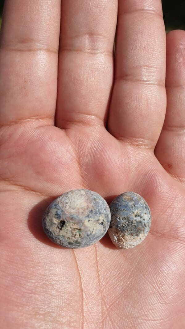 otter spiritual healing stone